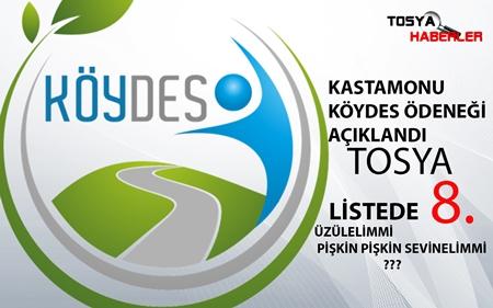 KÖYDES ÖDENEĞİ AÇIKLANDI TOSYA 8.SIRADA YER ALDI ( İŞTE LİSTE..)